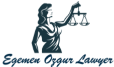Egemen Ozgur Lawyer | Lawyer at the Bar Association of Turkey |